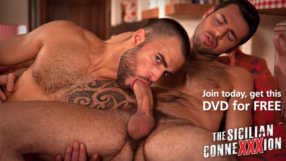 free_dvd_sldr